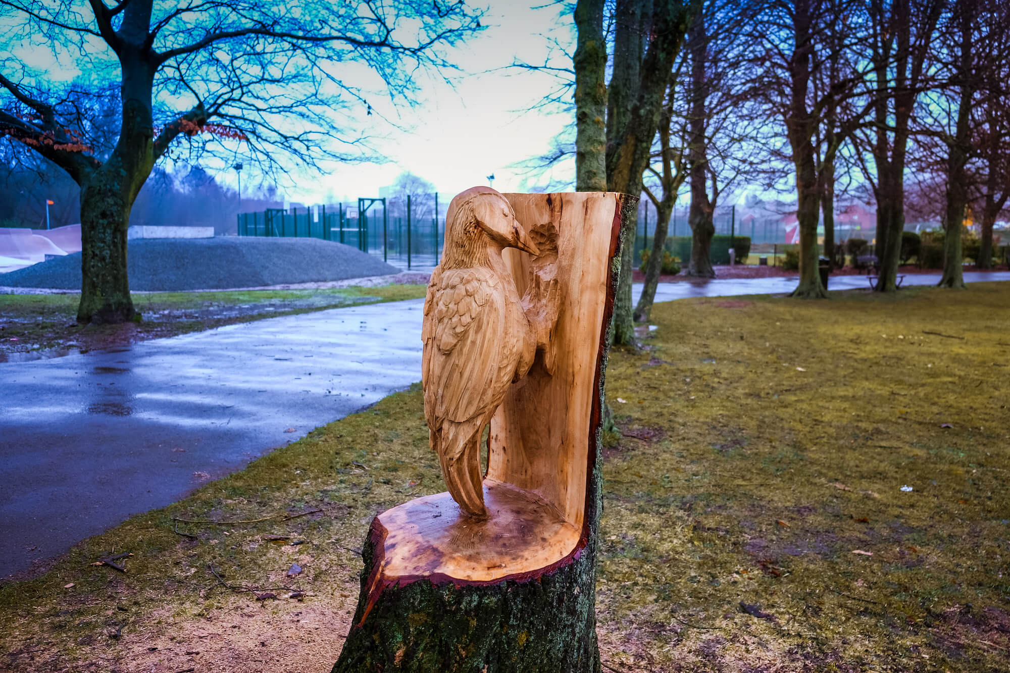 The Friends of Hednesford Park