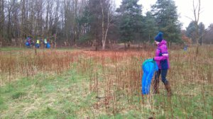 The Great British Spring Clean - Friends of Hednesford Park
